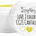 LoveNess Color Gel (Cantaloupe 021)